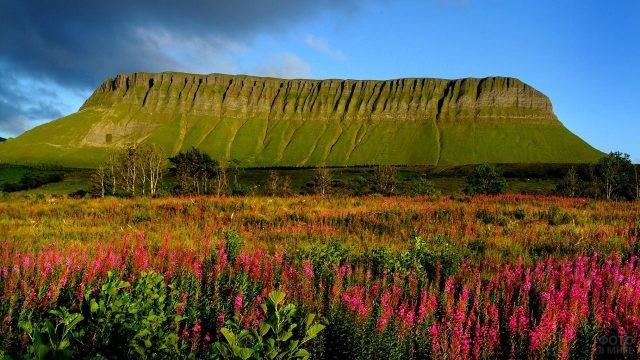 Живописная равнина на фоне горы