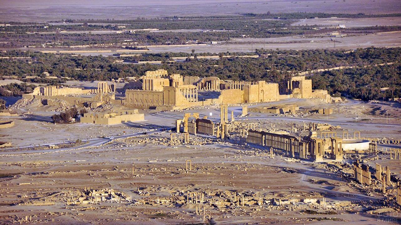 Панорама Пальмиры в сирийской пустыне