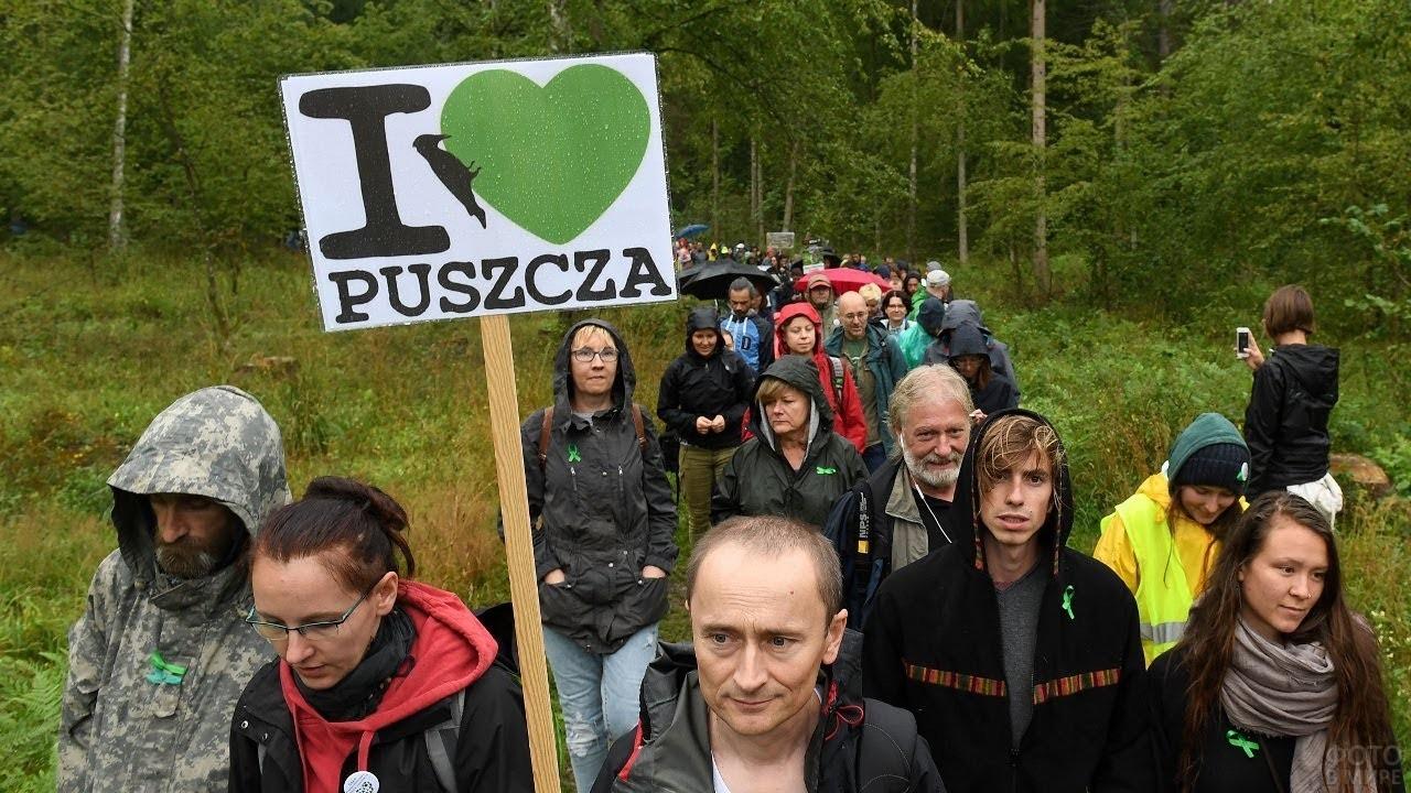 Демострация поляков против вырубки леса в Беловежской пуще
