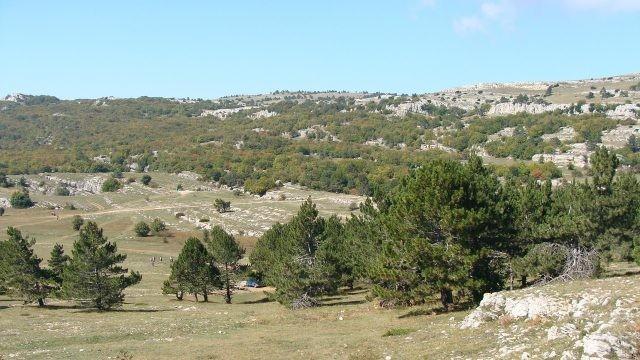 Вид на долину с горы Ай-Петри