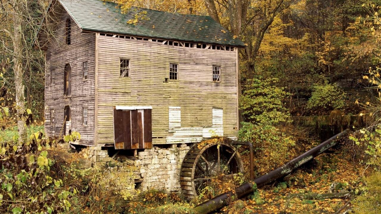 Заброшенная водяная мельница в лесу