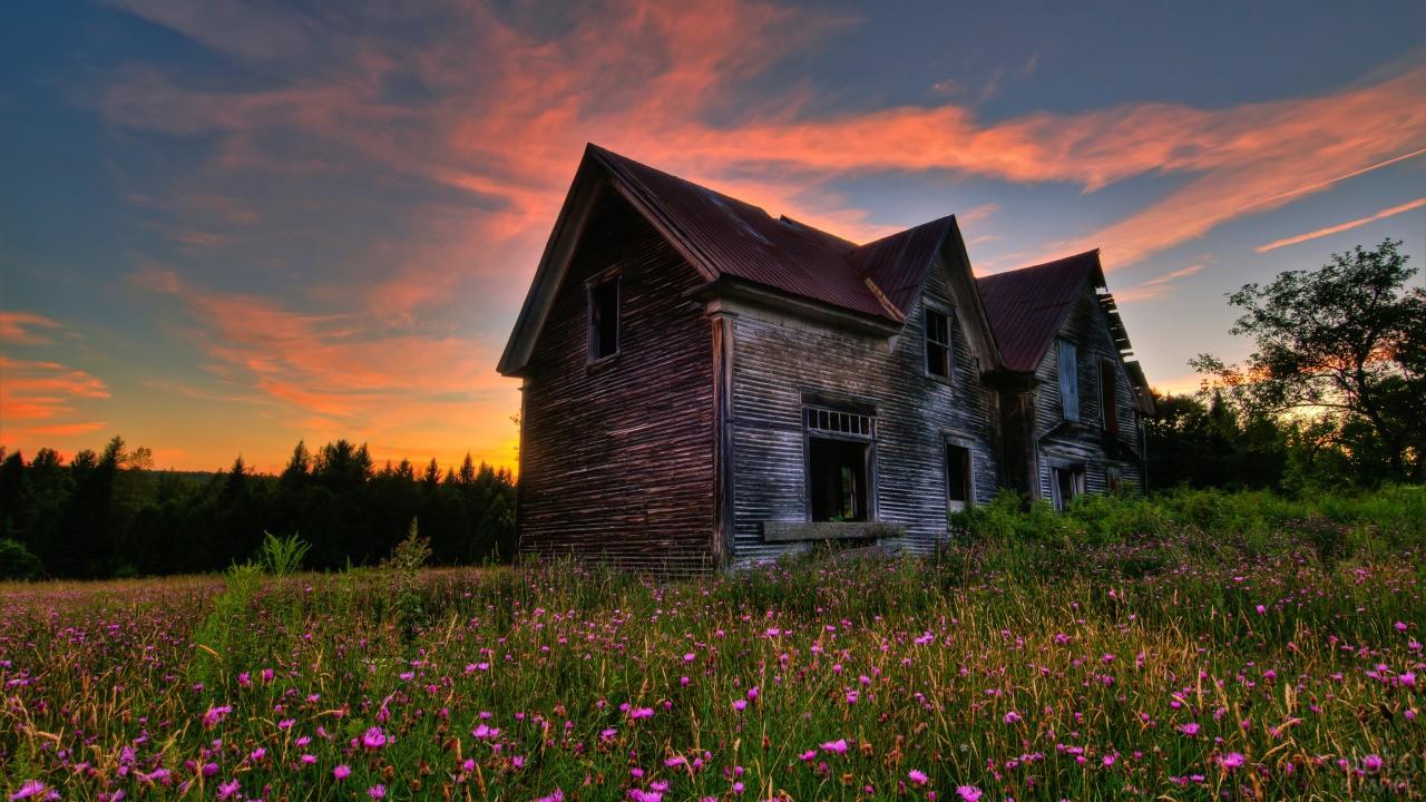 Заброшенный дом с цветами перед ним