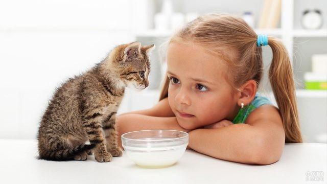 Девочка кормит котёнка