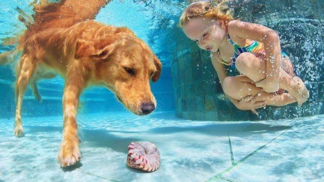 Девочка ныряет с собакой