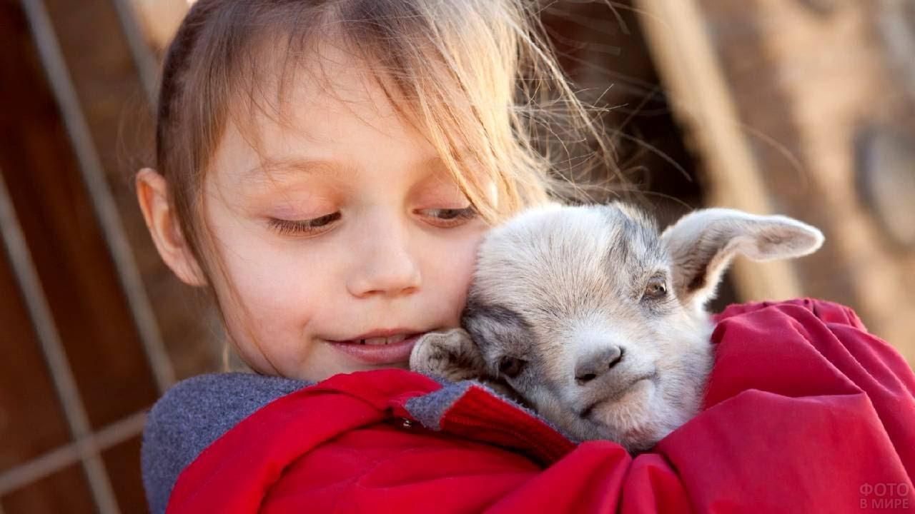 Девочка обнимает козлёнка