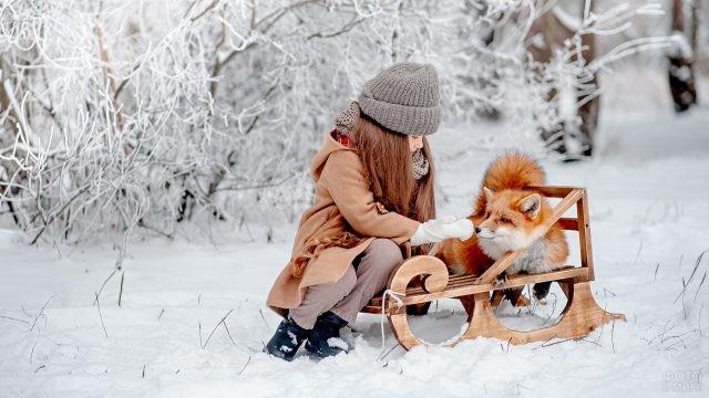 Девочка с лисичкой в зимнем лесу на санках