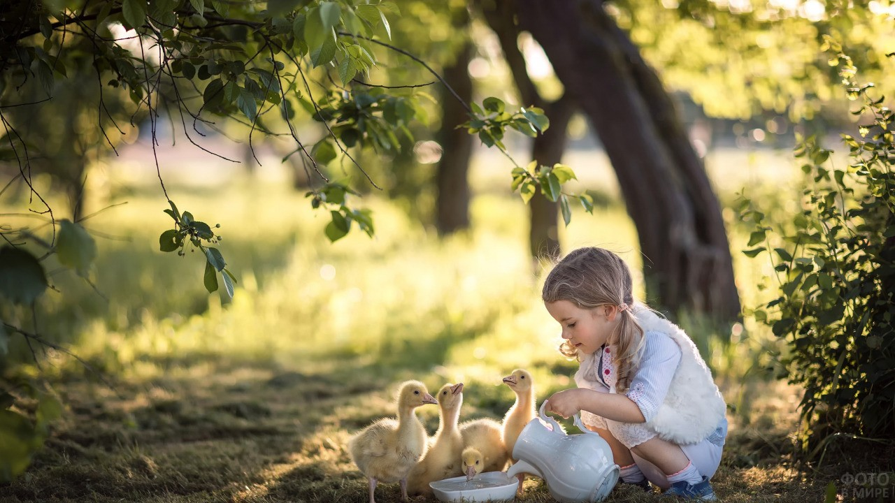 Девочка в лесу наливает утятам воду с кувшина