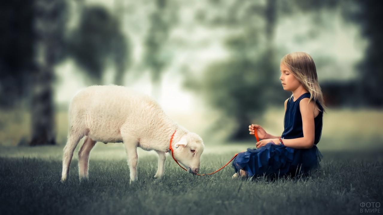 Девочка в лесу пасёт овечку