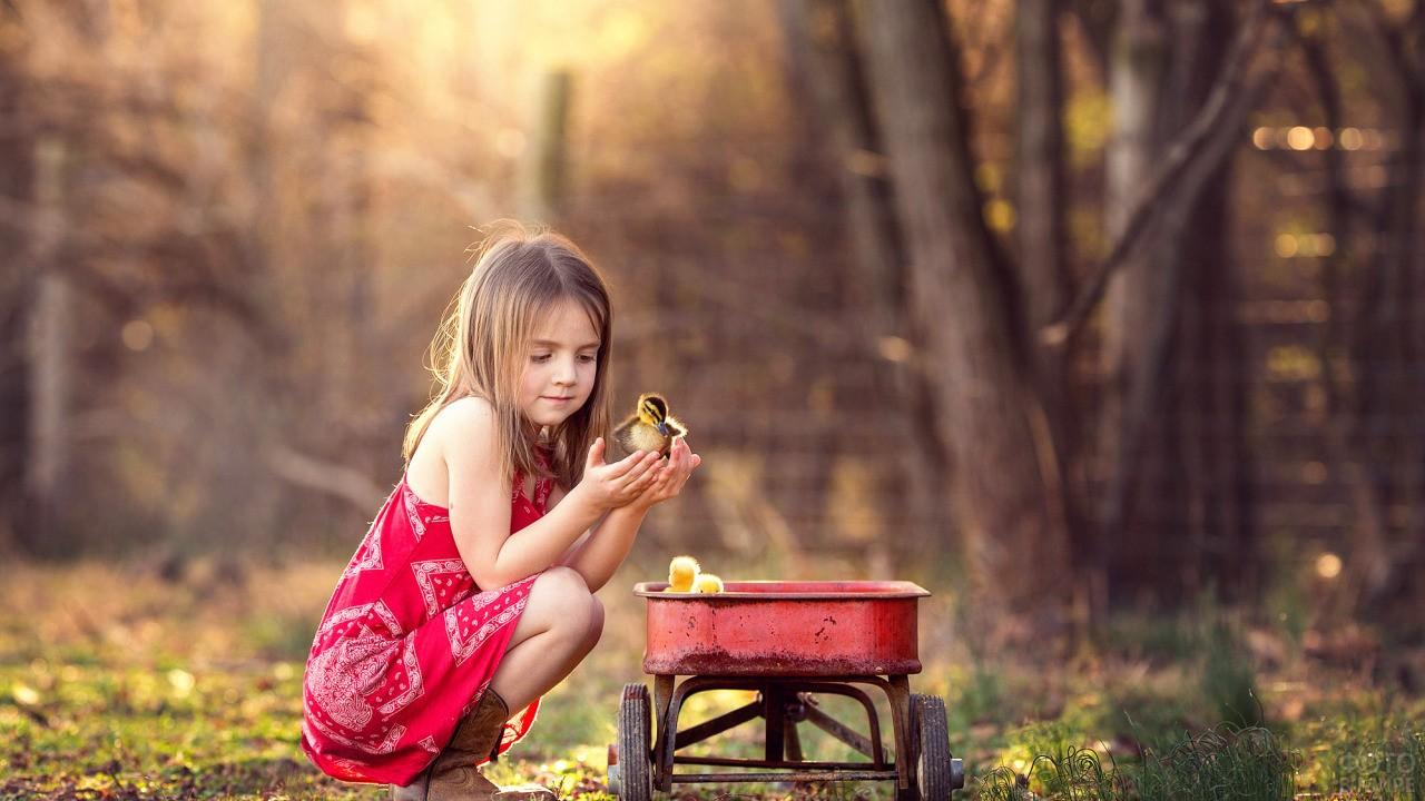 Девочка в лесу с утятами