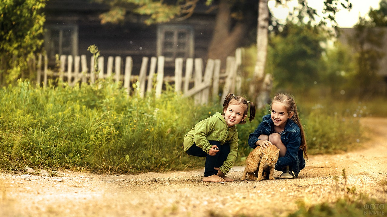 Девочки в деревне с рыжим котом