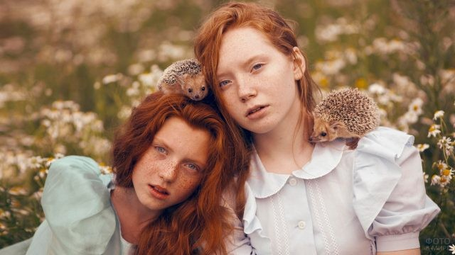 Две рыжих девочки на ромашковом поле с ёжиками