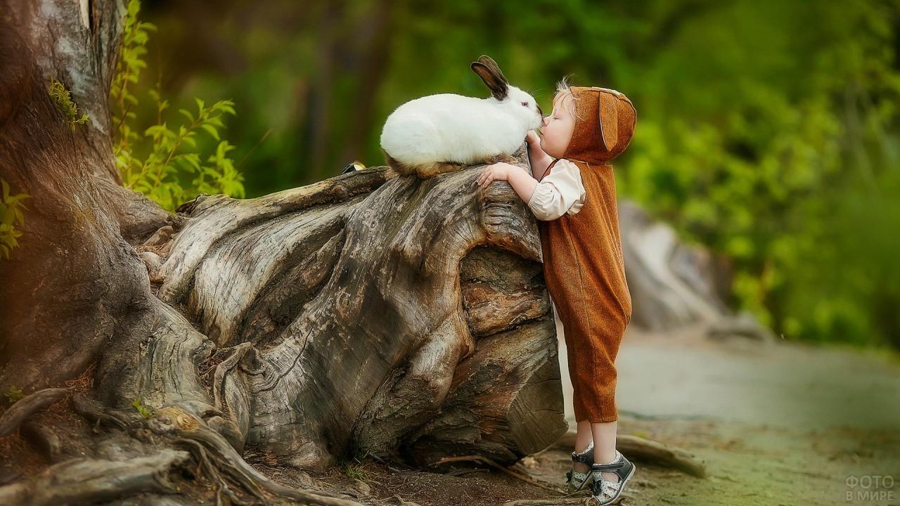 Мальчик пытается дотянуться до кролика