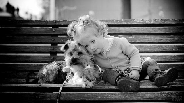 Малышка на лавочке с собакой