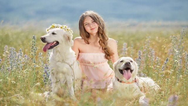 Девочка на цветочном лугу с двумя собаками