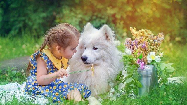 Девочка с собакой и букет цветов