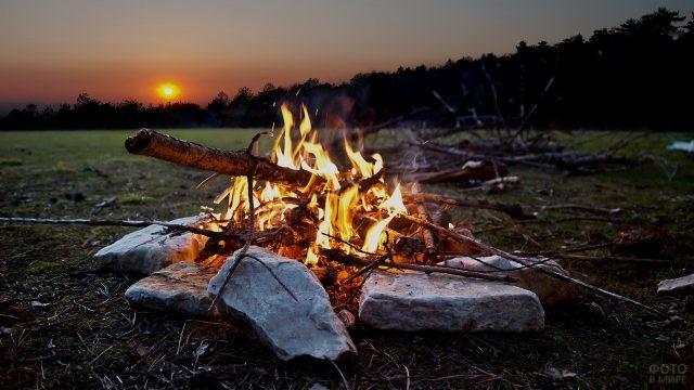 Ночной костёр на опушке леса