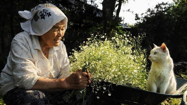 Бабушка в деревне с белой кошкой