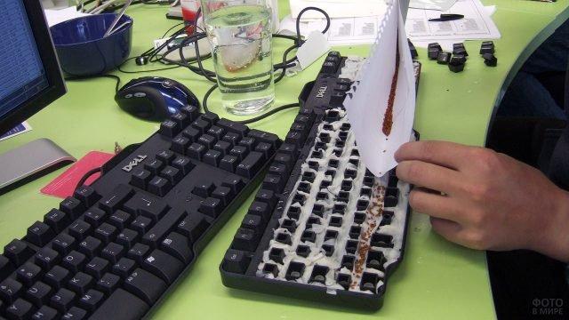 Процесс проращивания клавиатуры к 1 апреля