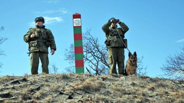 Пограничники с собакой на границе России