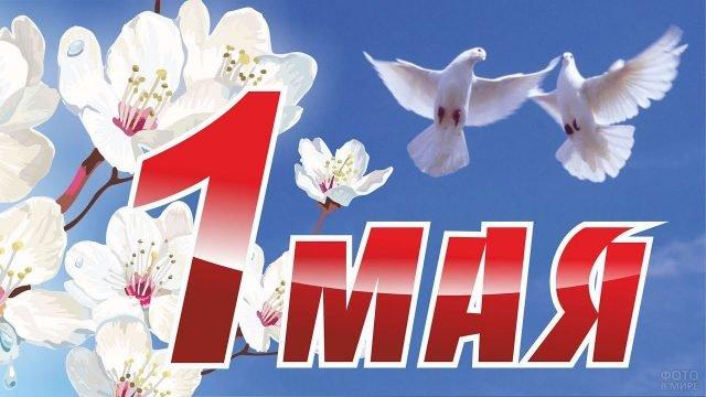 Первомайская открытка с цветами и голубями