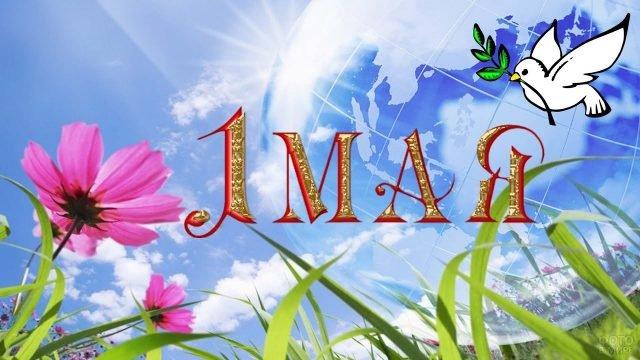 Первомайская открытка с весенними цветами и символом мира