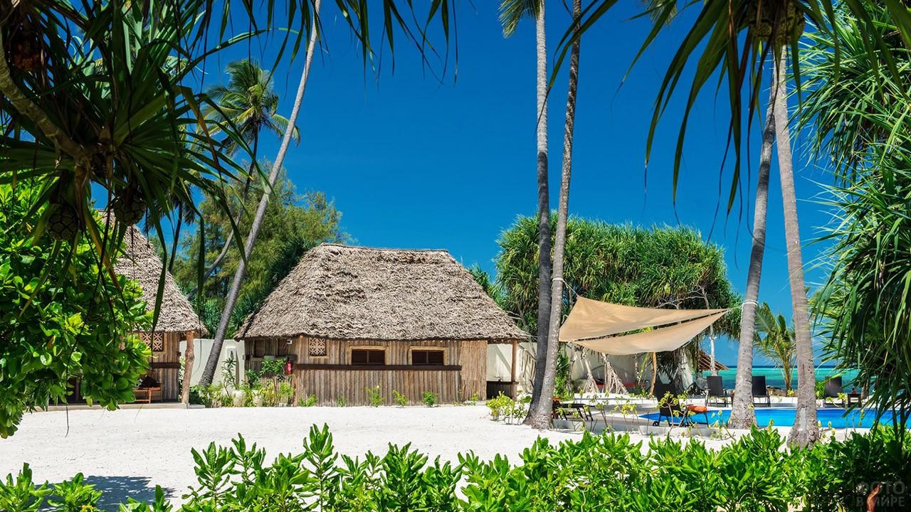 Бунгало под пальмами на Занзибаре