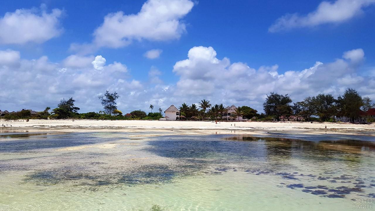 Побережье острова Занзибар