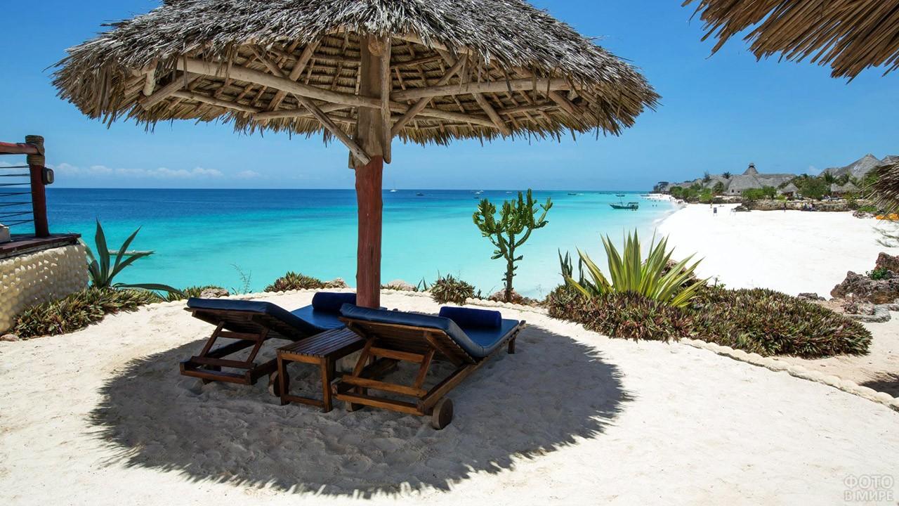 Шезлонги в тени под тропическим зонтиком на пляже