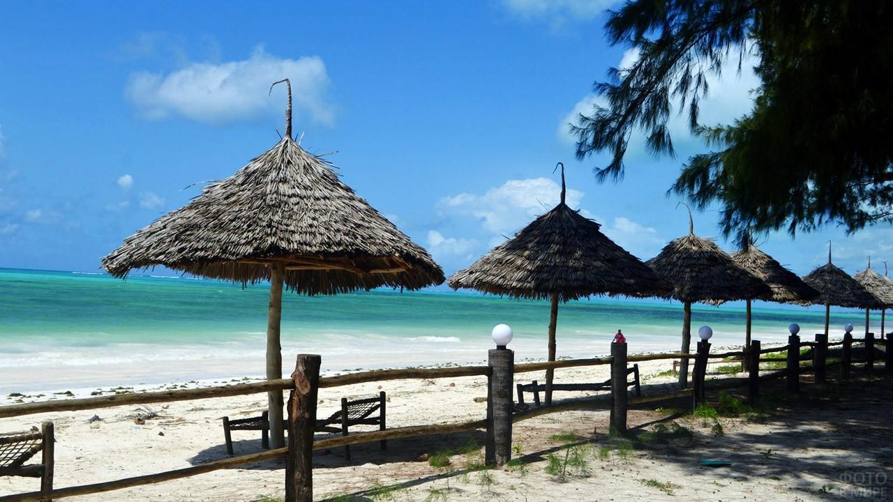 Тропические зонтики на пляже Занзибара