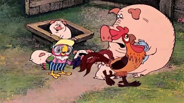 Кеша с петухом и свиньями
