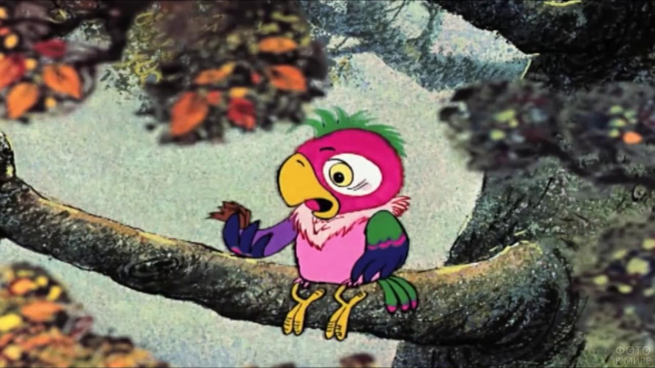 Кеша сидит на дереве