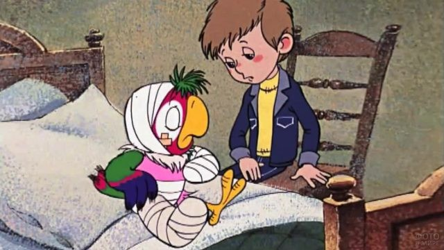 Попугай Кеша сидит на кровати с перемотанными лапами и головой