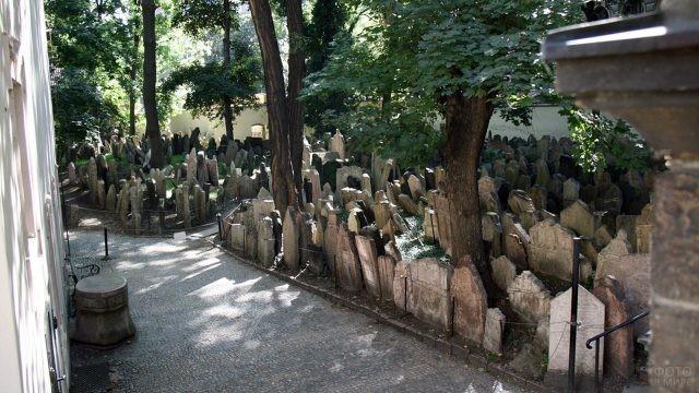 Дорожки парка Старого еврейского кладбища на заднем дворе Староновой синагоги