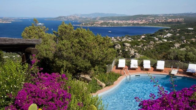 Пышная зелень у бассейна виллы на побережье Сардинии