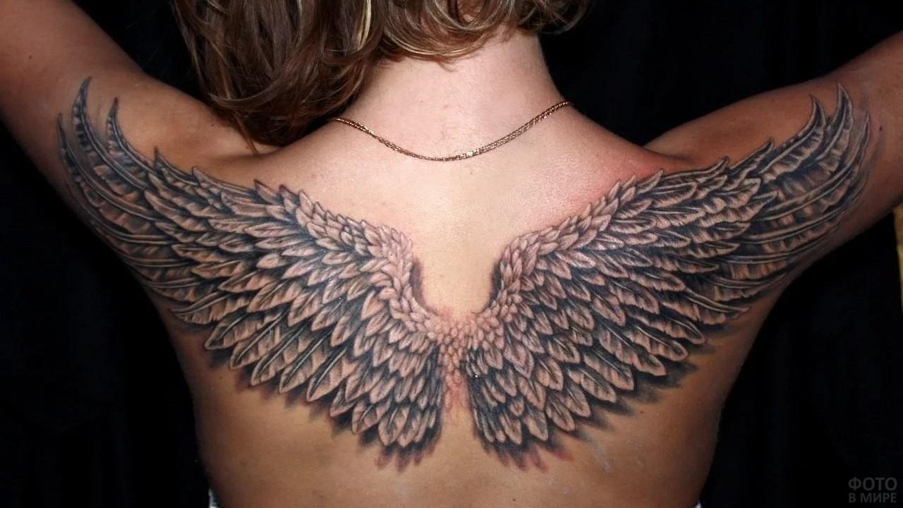 Татуировка на спине в виде крыльев