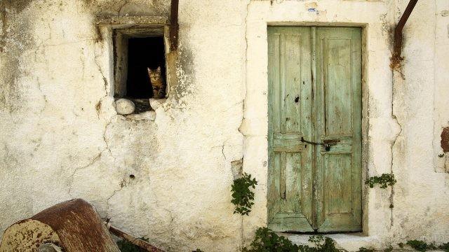 Кот выглядывает из окошка старого белёного дома