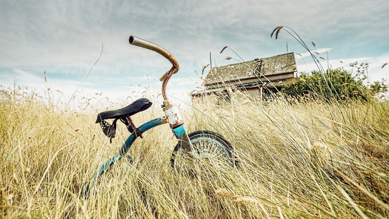 Ржавый велосипед с сухой траве