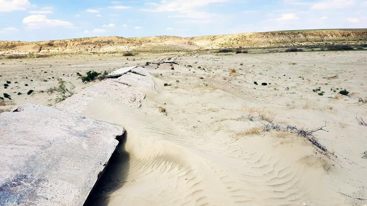 Степь на месте Аральского моря