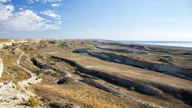 Степной пейзаж на побережье Аральского моря