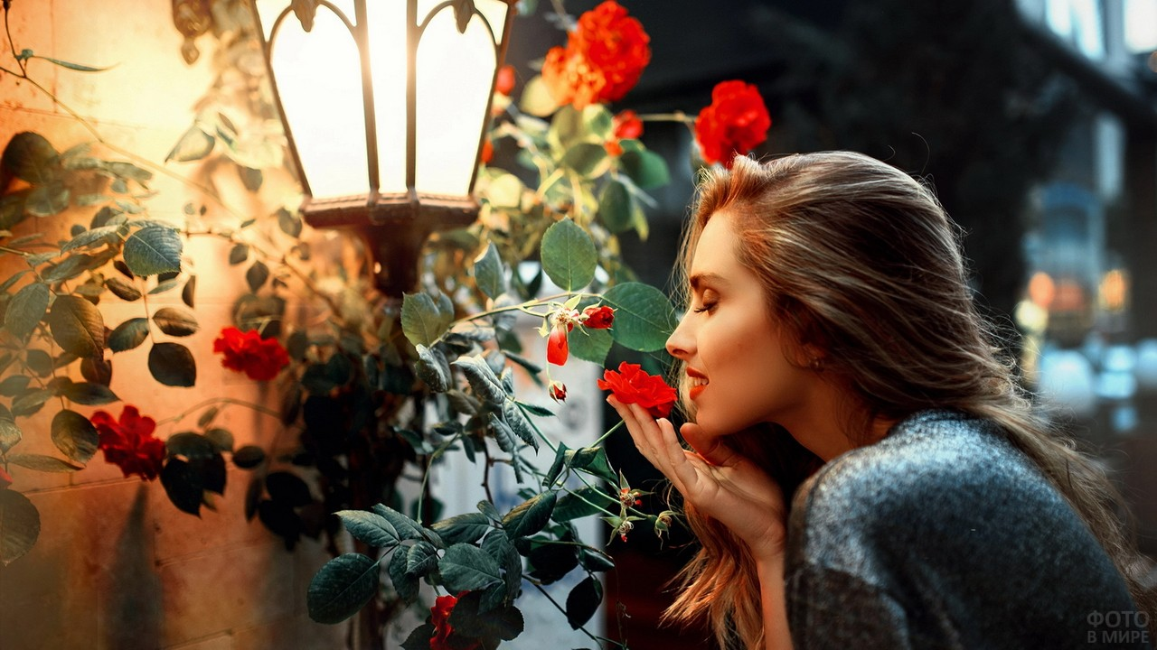 Девушка нюхает розы у фонаря