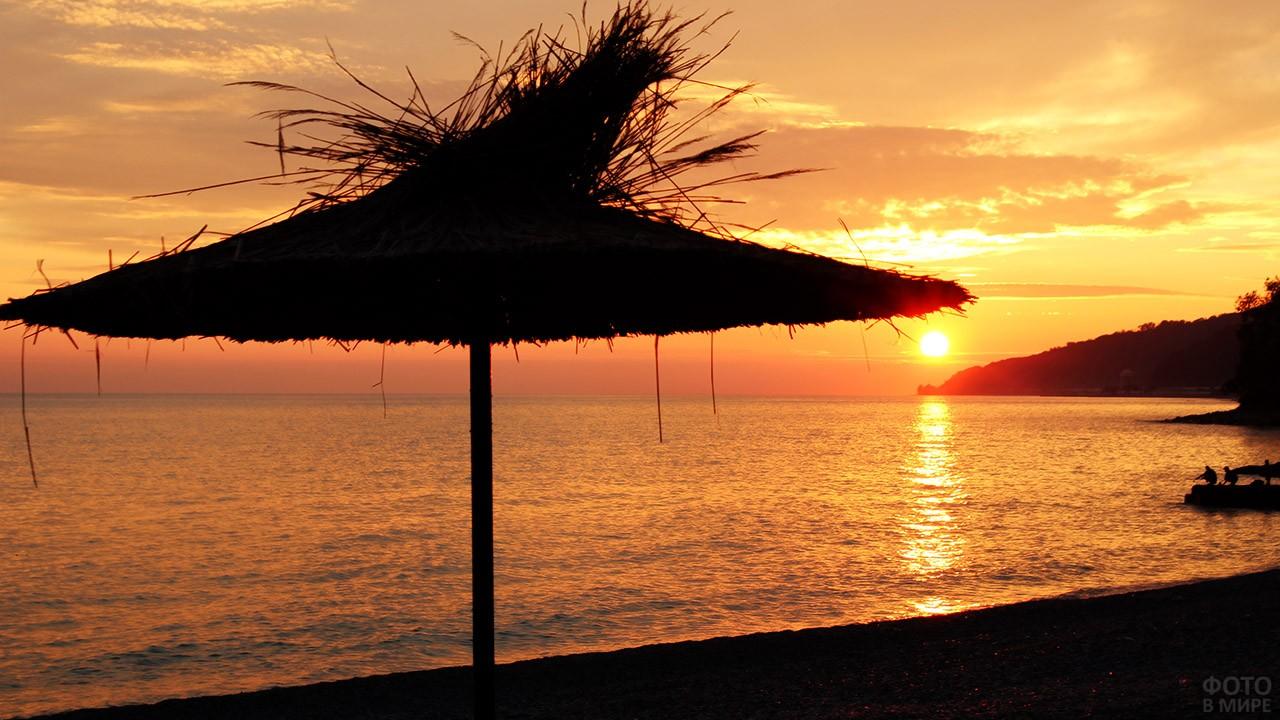 Тропический зонтик на фоне заката над пляжем