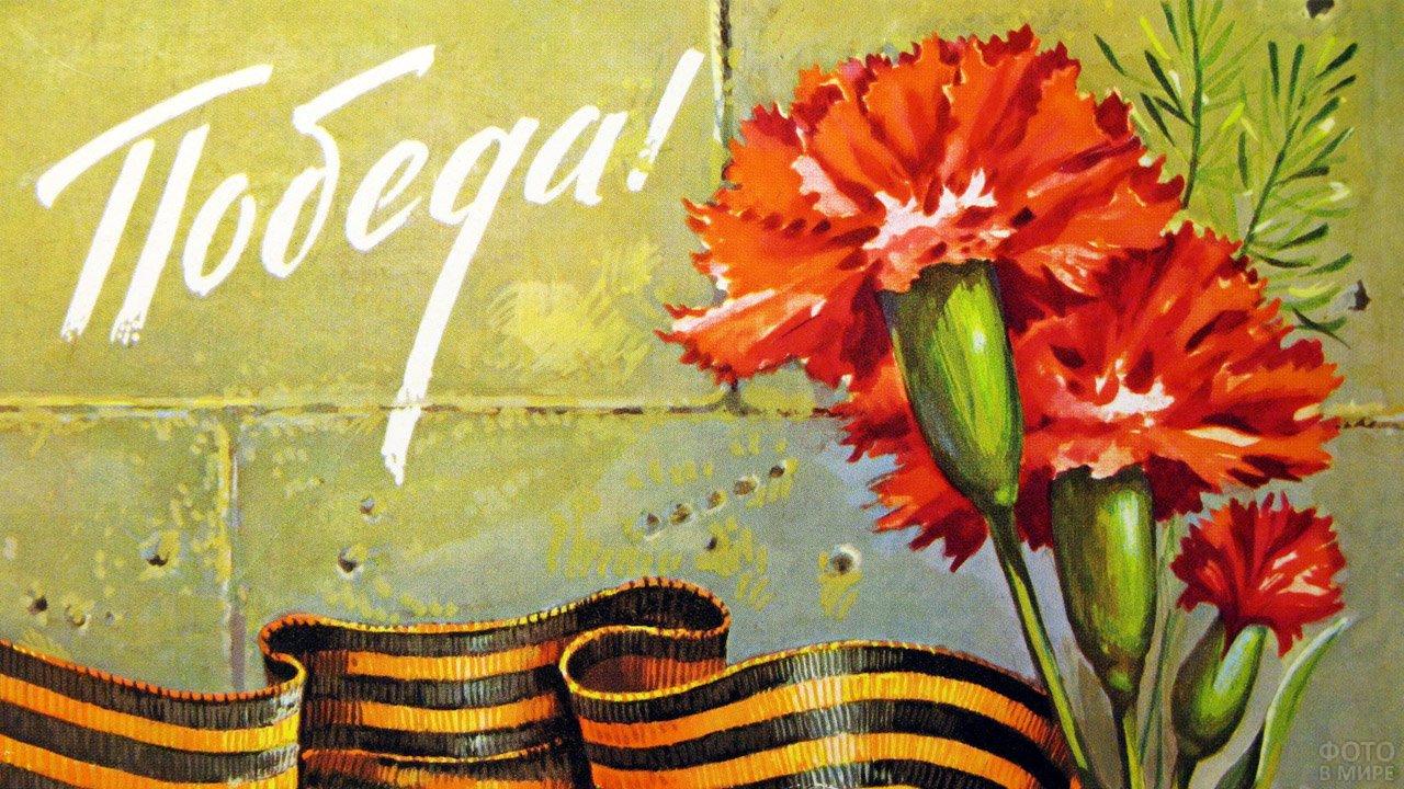 Днем, открытки к 9 мая с гвоздиками