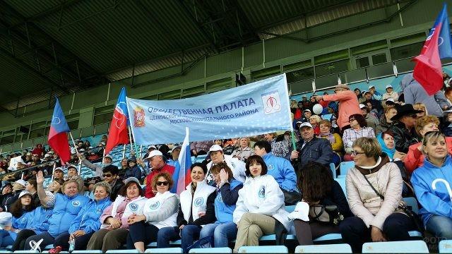 Представители общественной палаты на стадионе в День России
