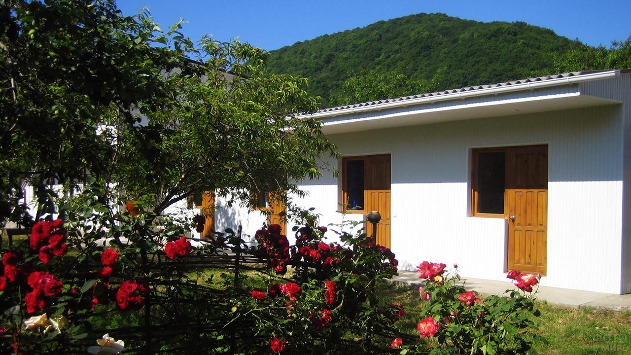 Цветущий сад во дворе гостевого дома