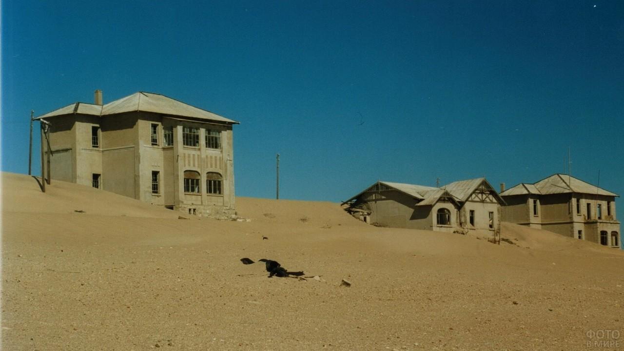 Дома в Колманскопе после песчаной бури