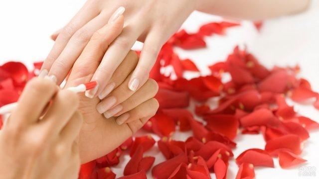 Девушке красят ногти на фоне лепестков роз