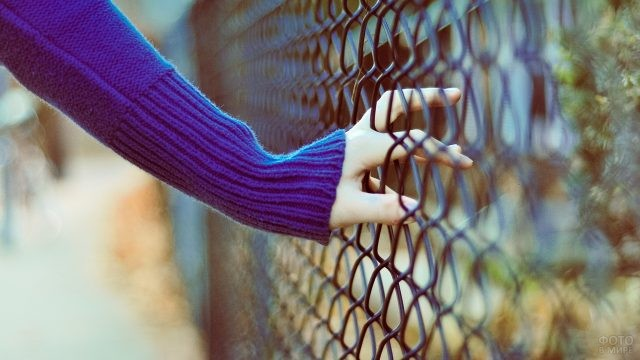 Пальцы девушки в сетке-рабице