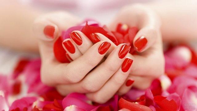 Руки с красным маникюром в лепестках роз