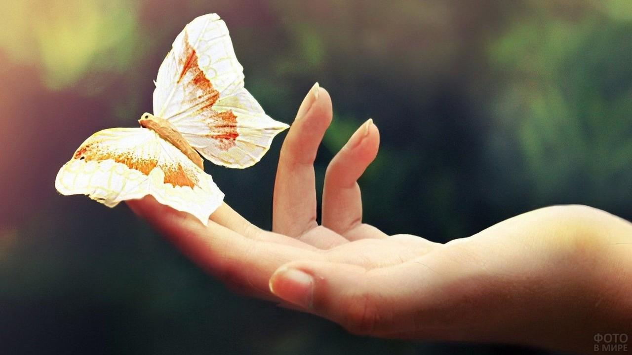 Светлая бабочка на кончиках пальцев