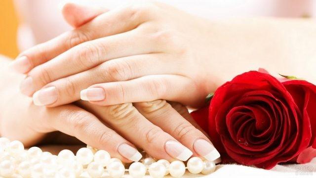 Ухоженные руки с бусами и розой